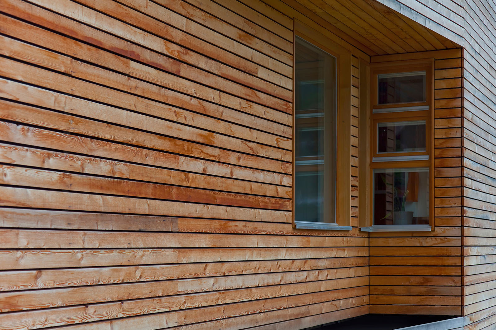 softwood-cladding-header